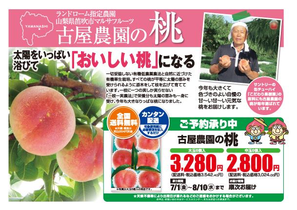 2016古屋農園の桃w610