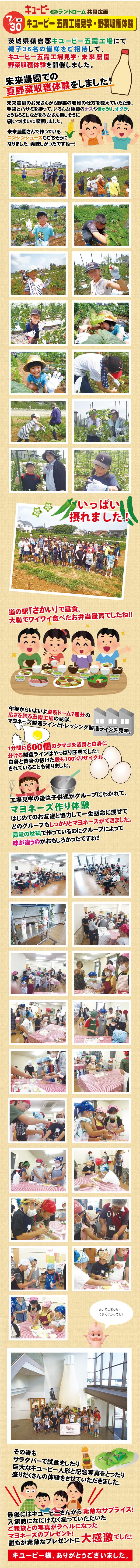 2019キユーピー工場見学hp用