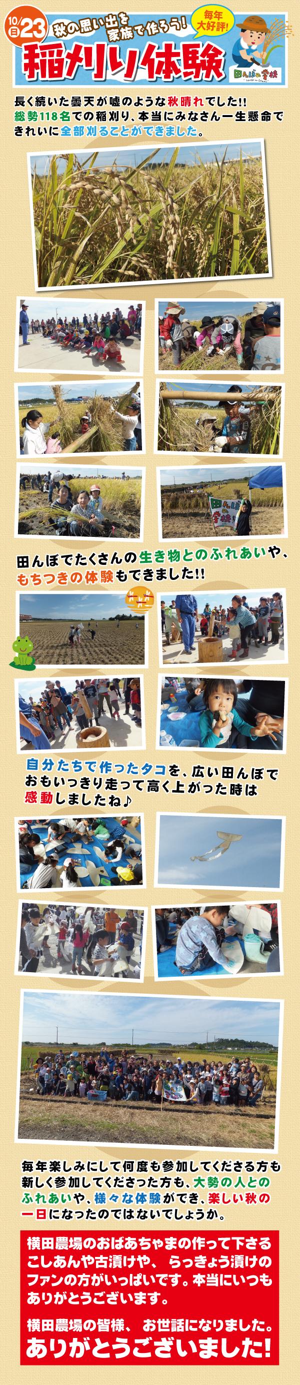 20161023稲刈り