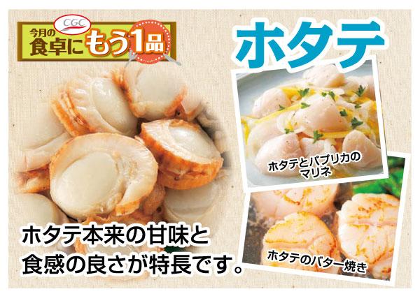 【CGC】ホタテ